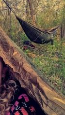 Snapseed (7)